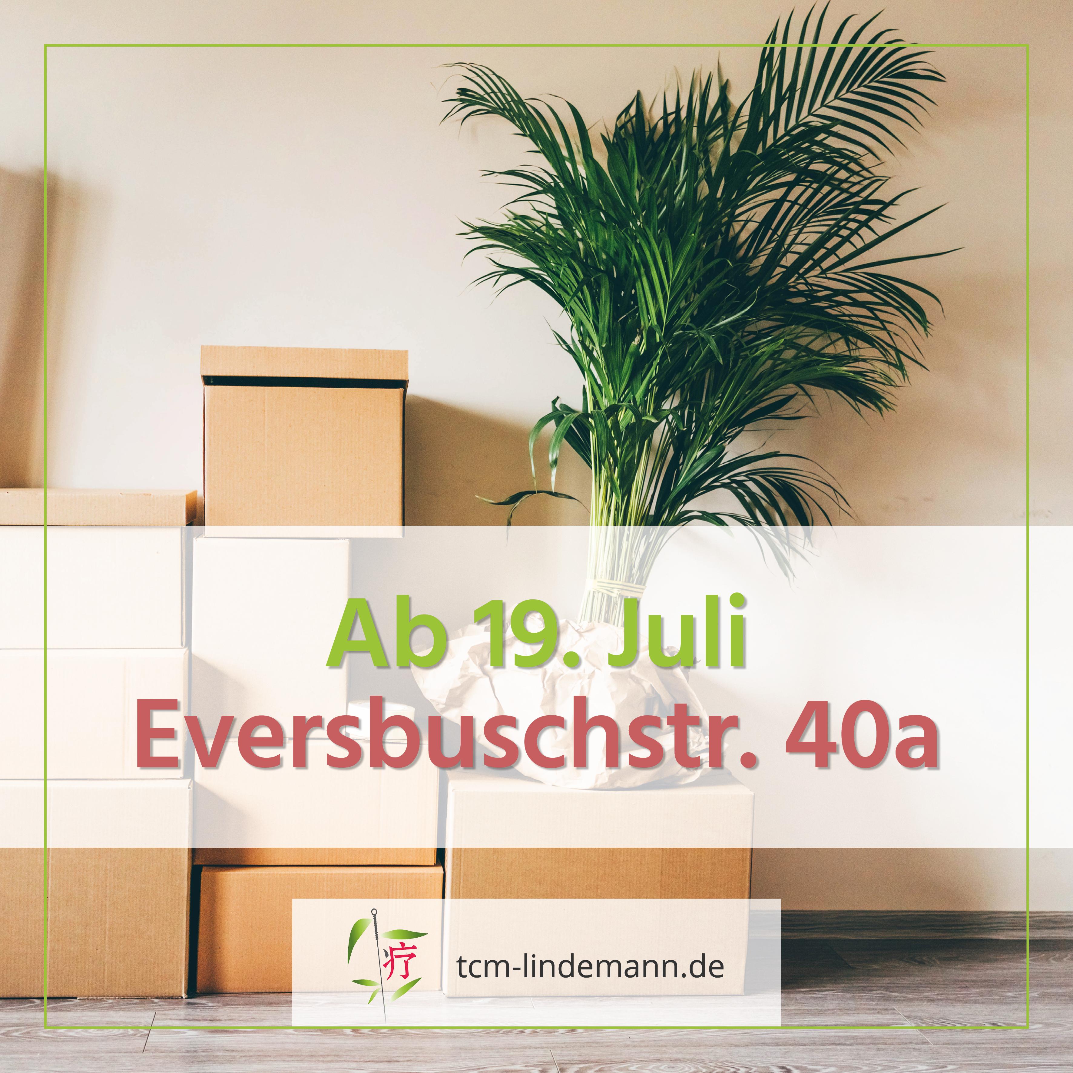 Neue Adresse: Praxis Dr. Nicolle Lindemann ist jetzt in der Eversbuchstraße 40a in München!